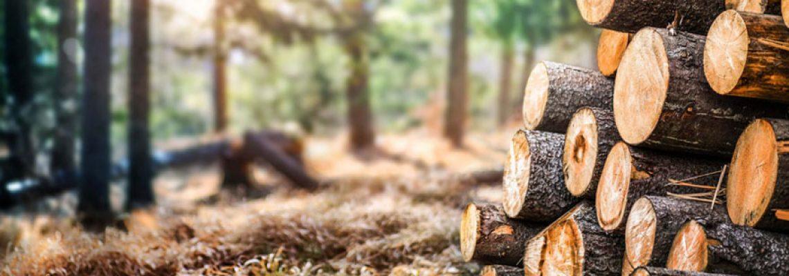 Avoir du bois compressé facilement