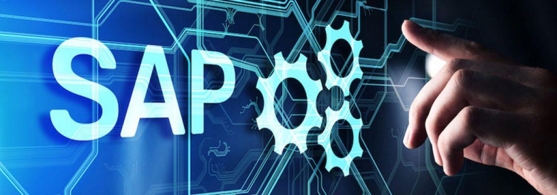 Qu'est-ce qu'un consultant SAP ?
